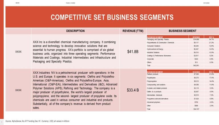 Competitive Set Business Segments for Media Audit